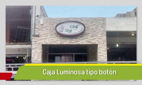 CAJA LUMINOSA TIPO BOTÓN