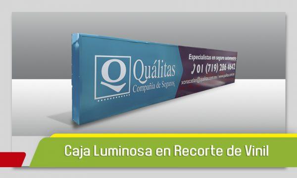 CAJA LUMINOSA EN RECORTE DE VINIL DE COLOR